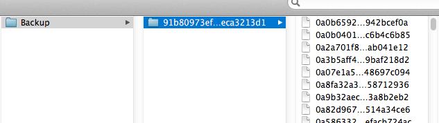 iPhone Backup Folder